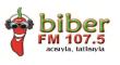 Radyo Biber