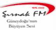 Şırnak FM