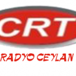 radyo crt logo