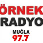 radyo örnek fm